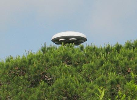 Anh sẽ hủy các báo cáo về UFO