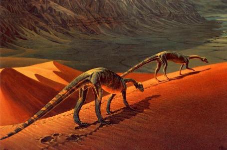 Phát hiện loài khủng long mới