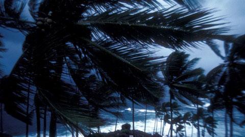 Gió mùa châu Á: nguyên nhân phát tán các chất ô nhiễm