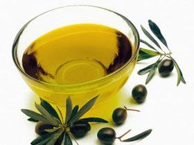 Chất phenol trong dầu ôliu ức chế gen có hại