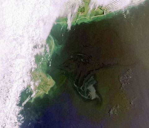 Cảnh tượng tràn dầu nhìn từ vũ trụ