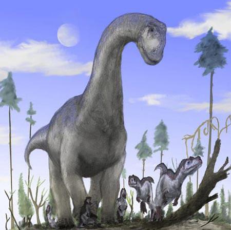 Tại sao khủng long ăn cỏ có cổ dài?