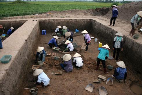 Cận cảnh khu vực phát lộ 'hạt thóc 3.000 năm' nảy mầm