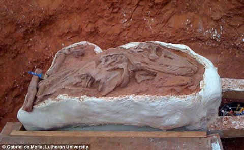 Phát hiện hóa thạch của loài ăn thịt trước thời khủng long