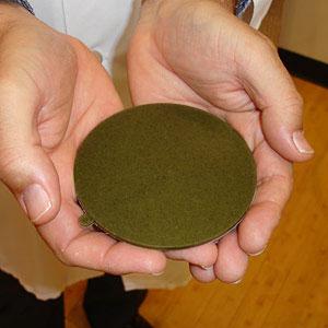 Biến tảo thành chất dẻo