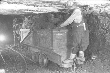 Hầm mỏ bỏ hoang thành mỏ nhiên liệu nhờ vi khuẩn