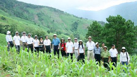 4,5 triệu USD chống biến đổi khí hậu tại Việt Nam