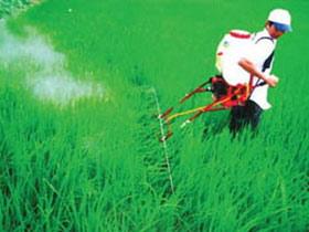 Nông dân chế tạo bộ phụ kiện phun thuốc đa năng