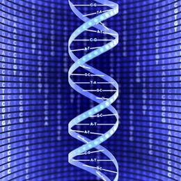 Liệu pháp gen có thể giúp bệnh nhân bị thiếu máu