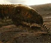 Video: Kẻ săn mồi thời tiền sử