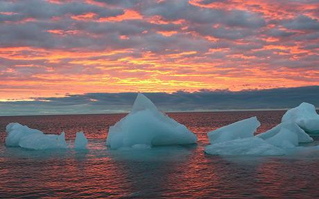 Băng ở Bắc Cực có thể sẽ biến mất vào năm 2030