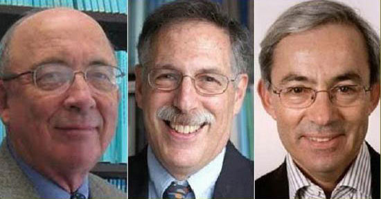 Những điều chưa biết về giải Nobel Kinh tế 2010