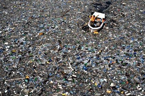 Trái đất oằn mình dưới những thảm họa môi trường