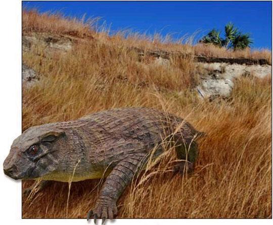 Phát hiện hóa thạch chủng cá sấu ăn chay cổ đại