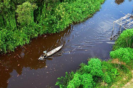 LHQ công bố bản đồ hệ sinh thái Mỹ Latinh và Caribe
