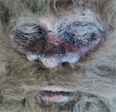 Xuất hiện bằng chứng mới về quái thú Bigfoot