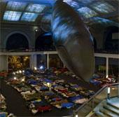 Cảm giác lạ trong đêm tối ở bảo tàng