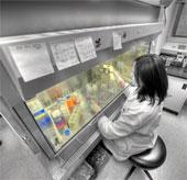 9 phát minh y tế mới sẽ cách mạng hóa việc chữa bệnh