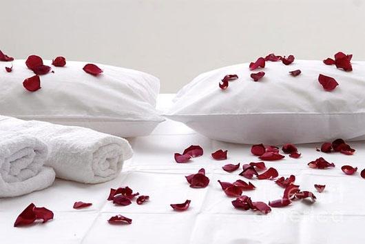 Giấc ngủ với hương thơm hoa hồng sẽ cho một giấc mơ đẹp và ngọt ngào