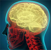 40 phút chỉ mô phỏng được 1 giây của não người