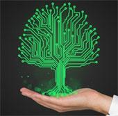 Dự án biến cây cối thành cảm biến sinh học đa mục đích