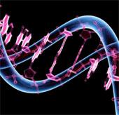 Sony lập công ty liên doanh nghiên cứu bộ mã di truyền