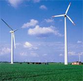 Đan Mạch lập kỷ lục thế giới mới về năng lượng gió