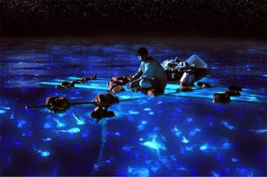 Vì sao biển đêm lại le lói những ánh sáng kỳ ảo?