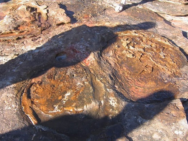 Tới Úc ướm thử vào vết chân khủng long