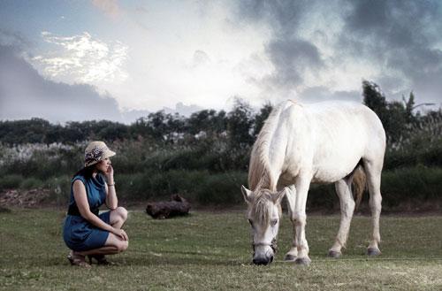 Vì sao ngựa thường ngủ đứng?