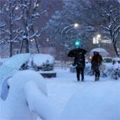 Mưa tuyết kỷ lục quét qua Nhật Bản gây thương vong lớn
