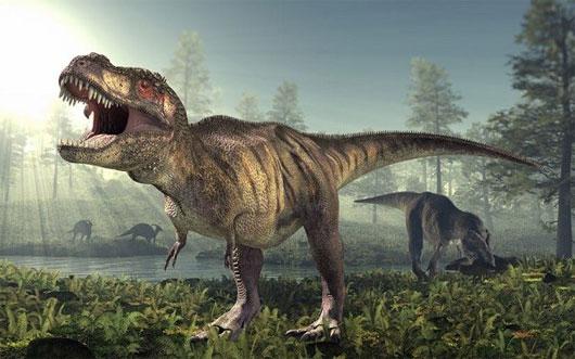 Nghiên cứu mới về bước đi của khủng long bạo chúa T- Rex
