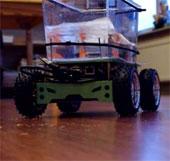 """Bể nuôi giúp cá cảnh tự """"bơi dạo"""" trong phòng"""