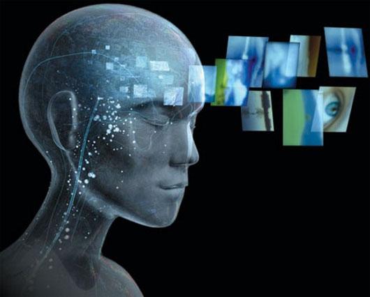 Vùng não giúp định dạng con người