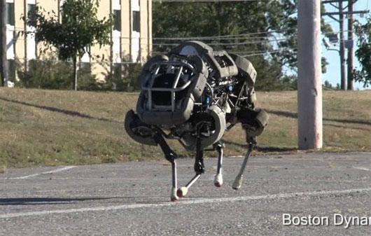 Các loại robot lấy cảm hứng từ động vật