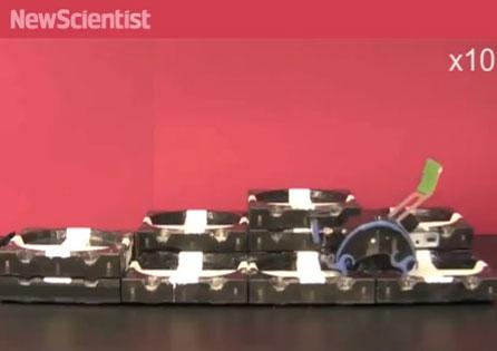 Robot lấy cảm hứng từ mối tự xây dựng công trình