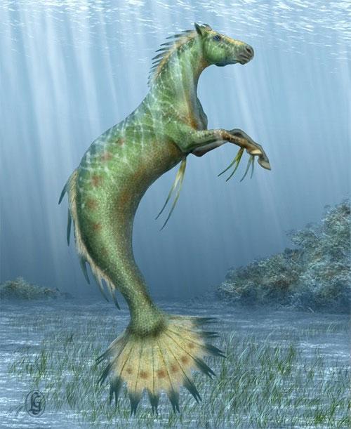 Ceffyl DWR được miêu tả có vẻ ngoài là to lớn, với phần trước là ngựa nhưng chi sau là đuôi cá.