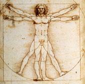 """Khám phá bác bỏ """"Người Vitruvius"""" của Da Vinci là hoàn hảo"""