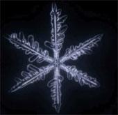Video: Giải mã bí ẩn hình thành hoa tuyết