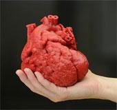 Chế tạo tim nhờ công nghệ in 3D