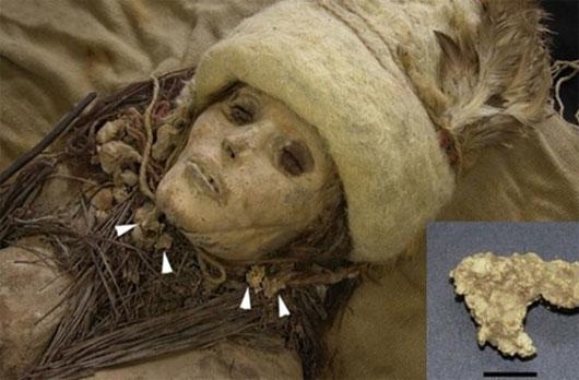 Pho mát 3.600 năm tuổi trên xác ướp cổ đại
