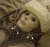 Pho mát 3600 năm tuổi trên xác ướp cổ đại