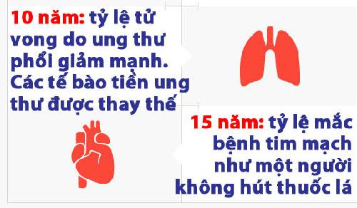 Lợi ích của việc bỏ thuốc lá