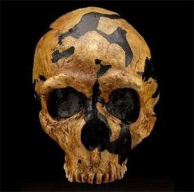 Bằng chứng hiếm có về tục lệ ăn thịt người thời cổ đại