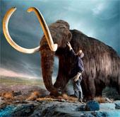 Công nghệ phát triển làm hồi sinh những loài đã tuyệt chủng?