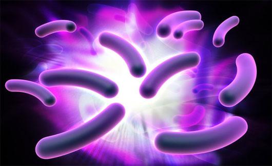 """Phát hiện vi khuẩn """"ăn"""" electron"""