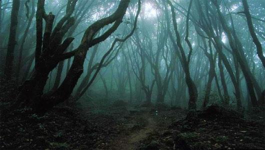 Tam giác quỷ trên cạn: Vùng đất Bridgewater bí ẩn