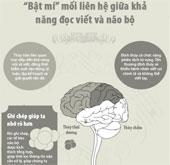 Mối liên hệ giữa khả năng đọc viết và não bộ