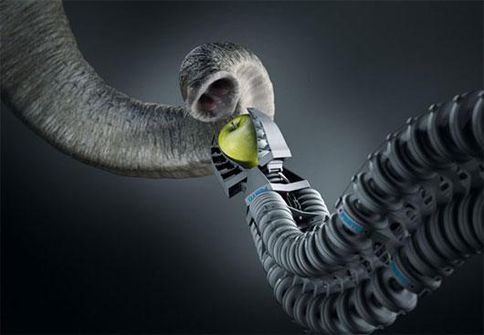 Vòi voi robot