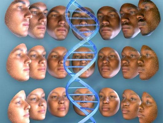 DNA có thể phác thảo gương mặt của nghi phạm